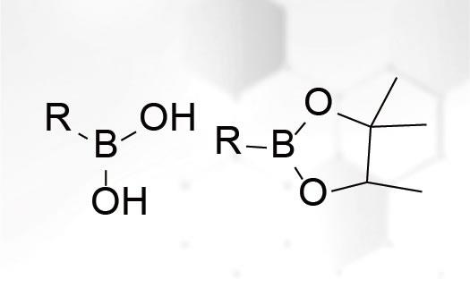 Boronic Acids and Esters
