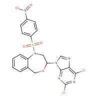 2,6-Dichloro-9-[1-(p-nitrobenzenesulfonyl)-1,2,3,5-tetrahydro-4,1-benzoxazepin-3-yl]-9H-purine