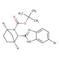 (1R,3S,4S)-3-(6-BroMo-1H-benziMidazol-2-yl)-2-azabicyclo[2.2.1]heptane-2-carboxylic acid 1,1-diMethylethyl ester