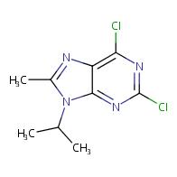 2,6-dichloro-8-methyl-9-(propan-2-yl)-9H-purine
