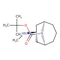 exo-3-methylamino-9-boc-9-azabicyclo[3.3.1]nonane