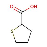 tetrahydrothiophene-2-carboxylic acid