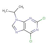 2,6-dichloro-9-(propan-2-yl)-9H-purine