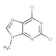 2,6-dichloro-9-methyl-9H-purine