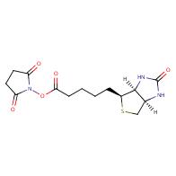 2,5-Dioxopyrrolidin-1-yl 5-((3aS,4S,6aR)-2-oxo-hexahydro-1H-thieno[3,4-d]imidazol-4-yl)pentanoate