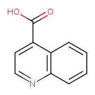 Quinoline-4-carboxylic acid