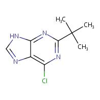 2-tert-butyl-6-chloro-9H-purine