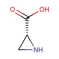 (R)-aziridine-2-carboxylic acid